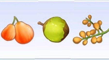 라그나로크 오리진 – 열매 위치 정보 (스크린샷)
