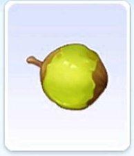 라그나로크 오리진 야자열매